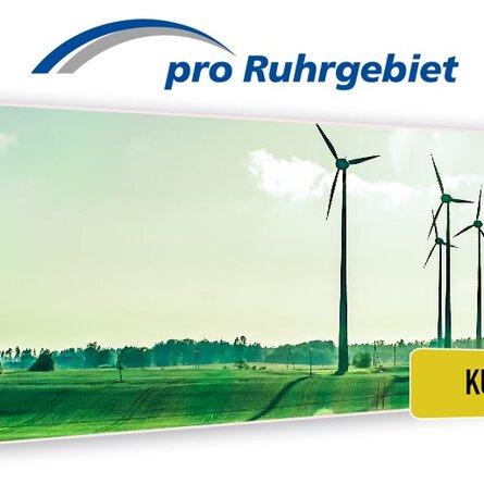 Das Logo des Pro Ruhrgebiet e.V.